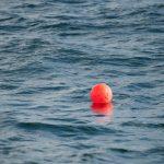 Imagen de: Sea buoys
